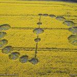 A Crop Circle Update